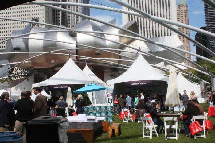 Millennium Park: Everything you need to know 1