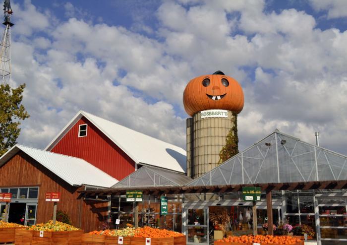 Goebbert's Pumpkin Patch and Farm