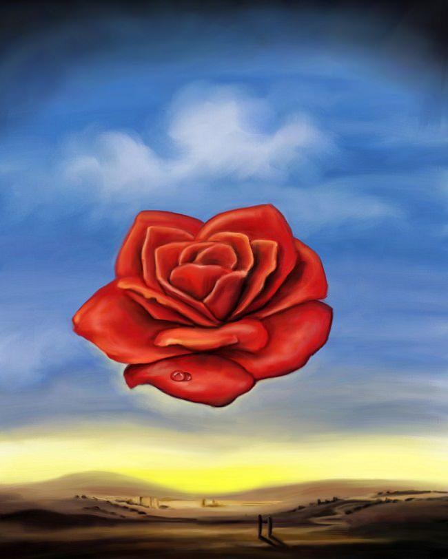 Rose - Meditative