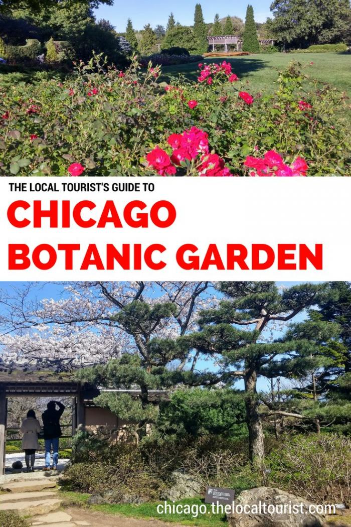 The Local Tourist's Guide to Chicago Botanic Garden