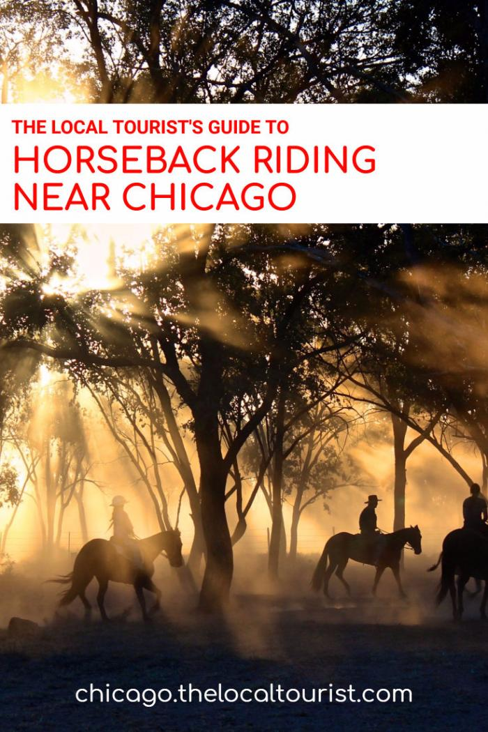 The Local Tourist's Guide to Horseback Riding in Chicago