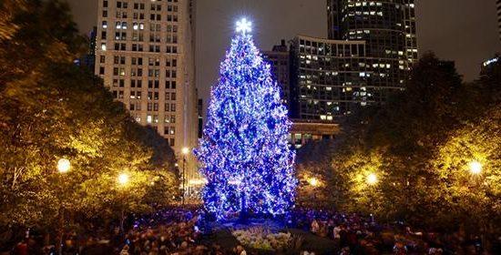 Chicago Christmas Tree Lighting Ceremony