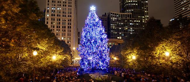 Chicago Christmas Tree Lighting Ceremony