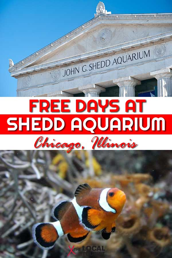 Chicago's Shedd Aquarium offers several free days a year for Illinois residents.
