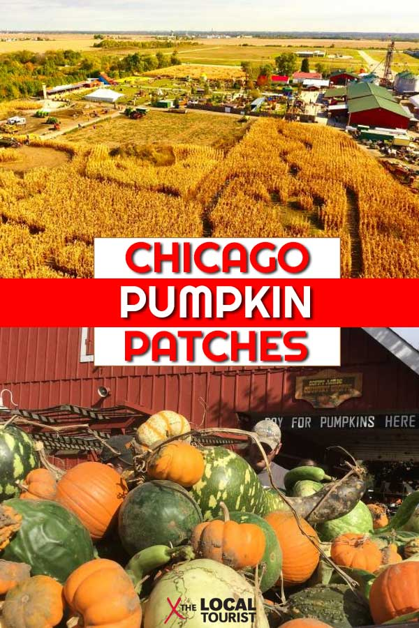 Chicago Area Pumpkin Festivals - Pumpkin patches, corn mazes, hay rides, and more fall fun near Chicago