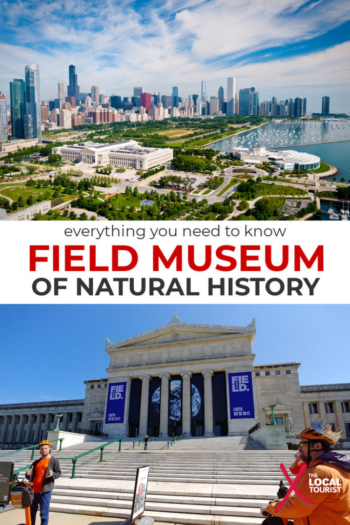 The Field Museum of Natural History in Chicago has millions of specimens, from gems to mummies to dinosaurs. Here's everything you need to know before visiting the Field Museum in Chicago. Chicago Museums | Chicago Things To Do | Chicago Attractions